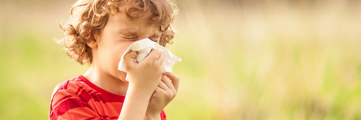 Can Babies Get Hay Fever Image 1