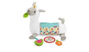 Fisher-Price Tummy Time Toy