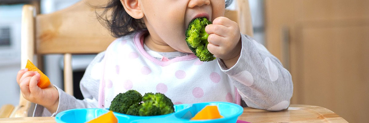Your 10-Month-Old Baby's Weekly Meal Plan Image 1