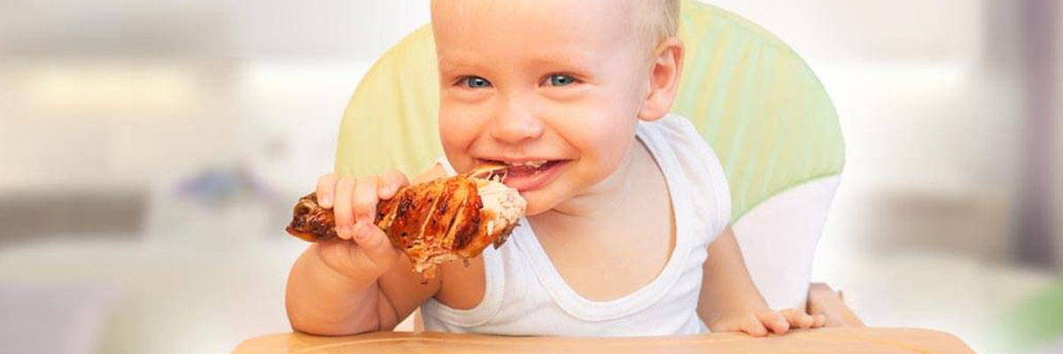 Chicken Recipes for Babies Image 1
